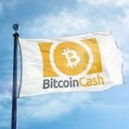 Bitcoin Cash Review – About BCH